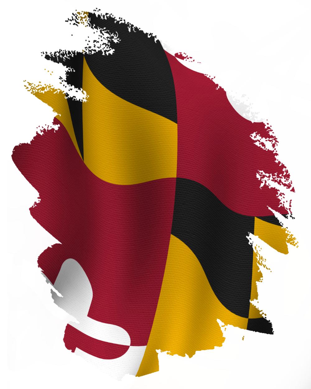 Maryland Flag Torn